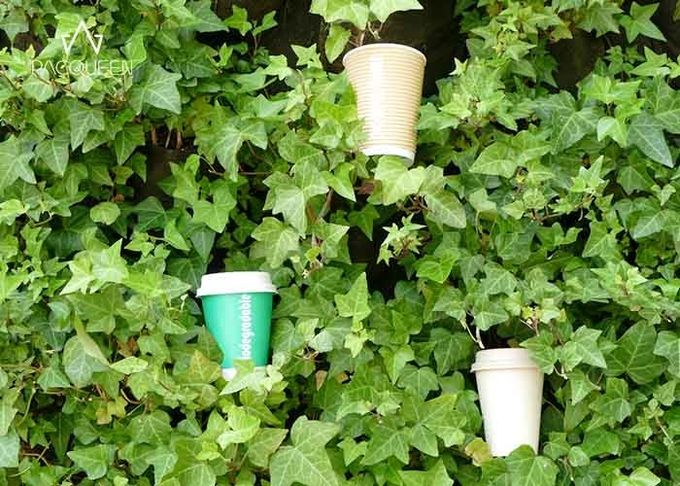 Single Wall Biodegradable Compostable Paper Cups Green Drinking Cup 4oz - 22oz